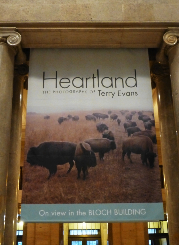 Heartland The Photographs of Terry Evans at Nelson Atkins