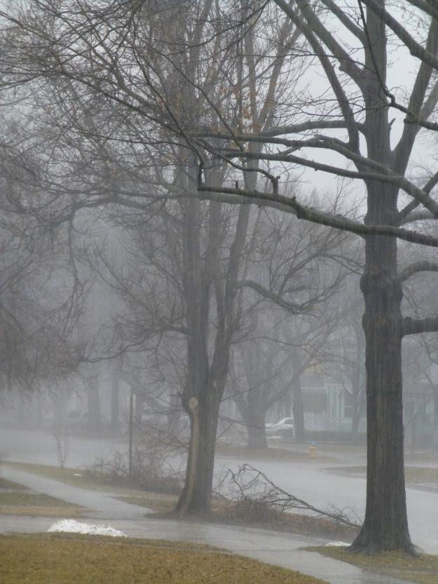 A few stubborn piles of snow cling to the grass as heavy rain pounds on Ottawa, Kansas.