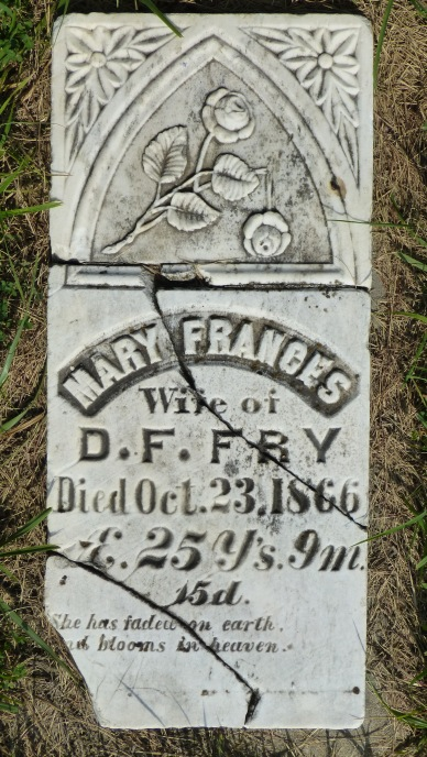 Mary Frances Fry's headstone shows a rose in full bloom. It's stem has been snapped, symbolizing a life cut short.