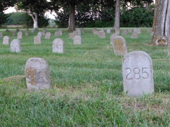 numbered graves
