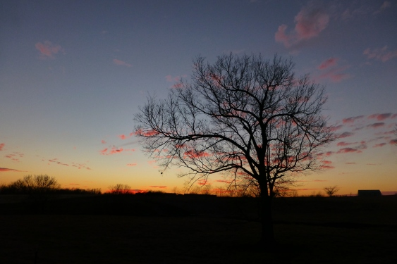 A winter sunset east of Louisburg, Kansas, on State Line Road.