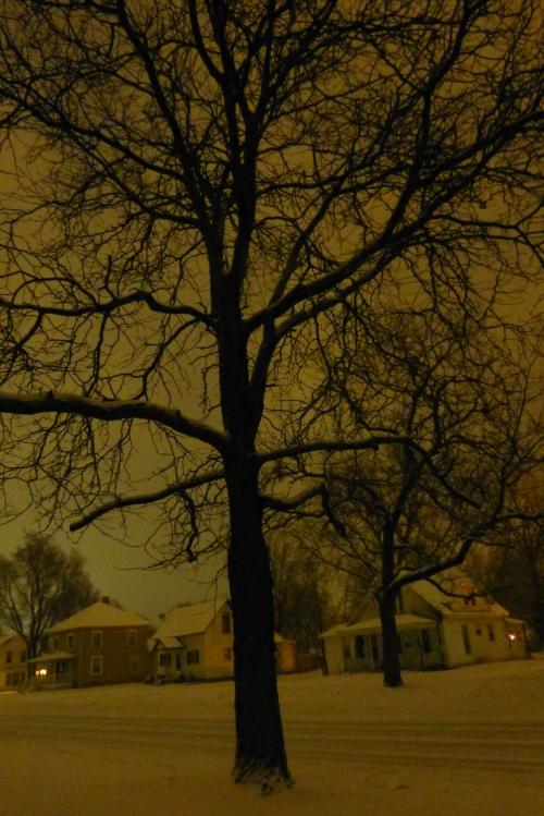 Snow at 2 29 am