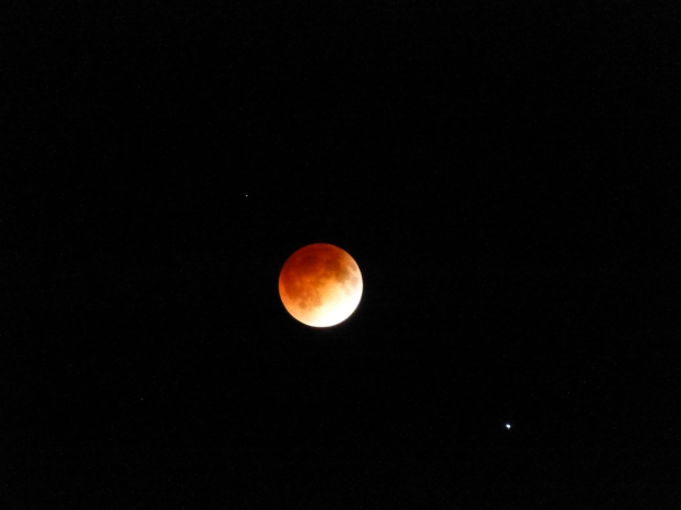 Lunar eclipse, as seen in Ottawa, Kansas.