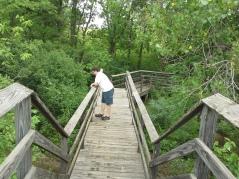 Bridge over Lower Fox Creek School