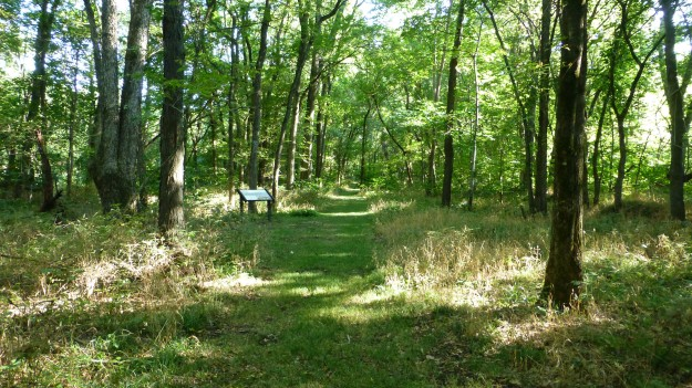 Well-maintained trails through the grasses and woody area by the creek are dotted with kiosks that tell the story of the Battle of Mine Creek. Bug spray is a good idea if you visit during the spring, summer, or fall before a hard freeze.