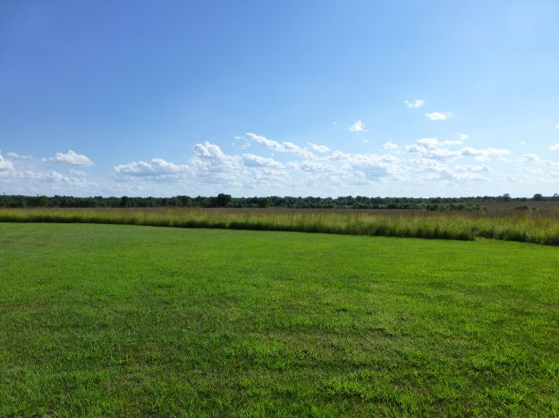 Looking south at the Mine Creek Battlefield site. The land has been returned to native prairie, recreating how it would have appeared to men who fought there in 1864.